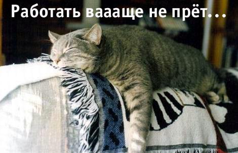 http://bezumnoe.ru/fun/vlom.jpg
